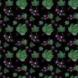 Watercolor seamless pattern. Red and black currant berries and leaves royalty free illustration