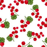Watercolor seamless pattern with red currant. Vector background. For healthy menu, packaging or wrapping Stock Photos
