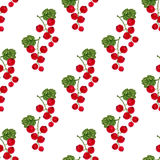 Watercolor seamless pattern with red currant. Vector fruit texture background. For healthy menu, packaging or wrapping Stock Photos