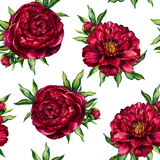 Watercolor seamless pattern red peony Stock Photo