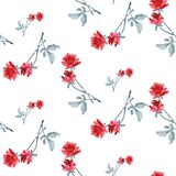 Watercolor seamless pattern with red roses and gray  leaves  on white background. Watercolor seamless pattern with red roses and gray leaves  on white Stock Photography