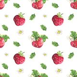 Strawberry and flowers pattern royalty free illustration