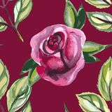 Watercolor seamless pattern with roses and leaves Royalty Free Stock Photo
