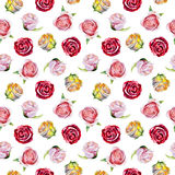 Watercolor seamless pattern with roses for valentines day, hand drawn style illustration. Royalty Free Stock Photos