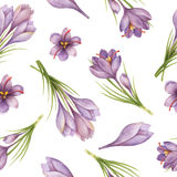 Watercolor seamless pattern with saffron flowers and branches. vector illustration