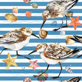 Watercolor seamless pattern with seashell and sea bird. stock illustration
