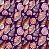 Watercolor seamless pattern Seashells. Pink shells