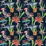 Watercolor seamless pattern with shark and laminaria branch. Hand painted parrotfish, starfish, jellyfish, octopus. Coral reef and air bubbles on blue Stock Photos