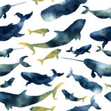 Watercolor seamless pattern with silhouettes of whales. Illustration with blue whales, cachalot, orca and narwhal. Isolated on white background. For design Stock Photo