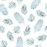 Watercolor pattern with spruce branches. Watercolor seamless pattern with spruce branches  on white background. Fabric design Royalty Free Stock Photos