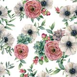 Watercolor seamless pattern with succulent, ranunculus, anemone. Hand painted flowers, eucaliptus leaves and succulent. Branch isolated on white background Stock Photography