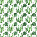 Watercolor seamless pattern with succulents and cactuses. Royalty Free Stock Image