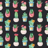 Watercolor seamless pattern with succulents and flowers in pots. stock illustration