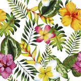 Watercolor seamless pattern. Summer tropical plants and flowers. royalty free illustration