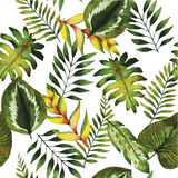 Watercolor seamless pattern. Summer tropical plants and flowers. stock illustration