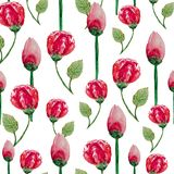 Watercolor seamless pattern of tea roses on a white background vector illustration