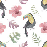 Watercolor seamless pattern with toucans, tropical flowers and leafs on white background.  Stock Photos