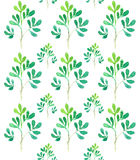 Watercolor seamless pattern tree branches Royalty Free Stock Photo