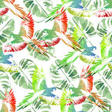 Watercolor seamless pattern. Tropical background. Parrots,  palm. S Royalty Free Stock Image