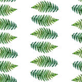 Watercolor seamless pattern with tropical ferns Stock Photos