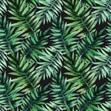 Watercolor seamless pattern with tropical leafs. Exotic fresh pattern isolated on black background. Watercolor seamless pattern with tropical leafs vector illustration