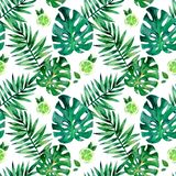 Watercolor seamless pattern with tropical leafs. Exotic fresh pattern isolated on white background. Watercolor seamless pattern with tropical leafs vector illustration