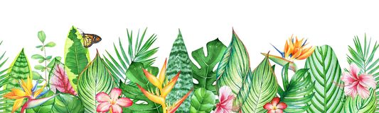 Watercolor seamless pattern with tropical leaves, plants and flowers vector illustration