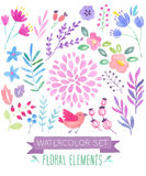 Watercolor floral set.. Vector illustration Royalty Free Stock Photos