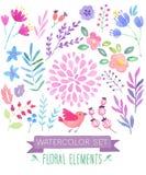 Watercolor floral set. Vector illustration stock illustration