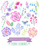 Watercolor floral set.. Vector illustration Stock Image