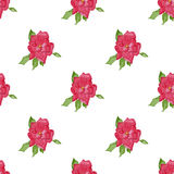 Watercolor seamless pattern, vector image. Royalty Free Stock Images