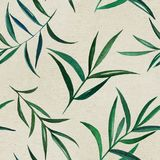Watercolor seamless pattern on vintage paper. 2d hand drawn watercolor seamless background. Colorful yucca or laurus branch with leaves illustration on old Stock Image