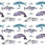 Watercolor seamless pattern with whales royalty free illustration