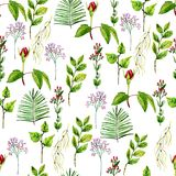 Watercolor seamless pattern. On the white background Stock Photos