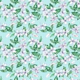 Watercolor seamless pattern with white coffee flowers and green leaves. Hand-drawn illustration stock illustration