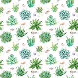 Watercolor Seamless Pattern With Compositions Of Succulents, Flowers. Royalty Free Stock Images
