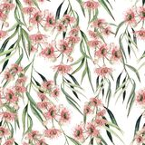 Watercolor seamless pattern witn eucalyptus branch. Hand drawn illustration. Floral background vector illustration