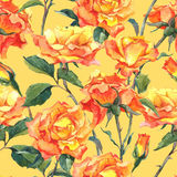 Watercolor Seamless Pattern with Yellow Roses Stock Image
