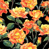 Watercolor Seamless Pattern with Yellow Roses Stock Photos