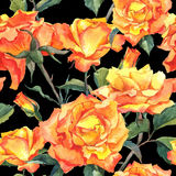 Watercolor Seamless Pattern with Yellow Roses Royalty Free Stock Photos