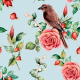 Watercolor seamless patttern with bird and rose. Hand painted floral illustration with snowberries, dogrose, leaves and. Branches isolated on blue background Royalty Free Illustration