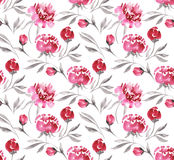 Watercolor seamless pink peonies Stock Images