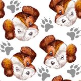 Watercolor seamless repeating pattern of gray paw prints of dogs and portraits of white with brown heads of puppies Jack Russell vector illustration