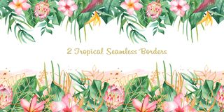 Watercolor seamless tropical border. royalty free illustration