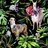 Watercolor seamless tropical pattern of alpaca with flags and cartoon llama