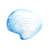 Watercolor Seashell. Seashell watercolor illustration. Hand drawn underwater element design. Artistic  marine design element. Illustration for greeting cards Stock Image