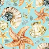 Watercolor seashell pattern Royalty Free Stock Photo