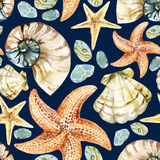 Watercolor seashell pattern Stock Photos