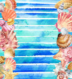 Watercolor Seashell. Seashell on watercolor blue background. Stock Photo