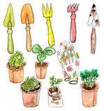 Watercolor seedle and garden tools Royalty Free Stock Images